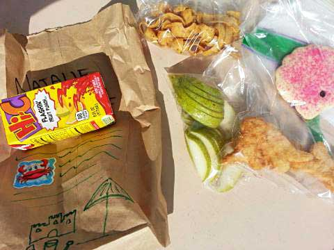 Brown Sack Lunches - Bag Lunch Ideas with a frozen juice box