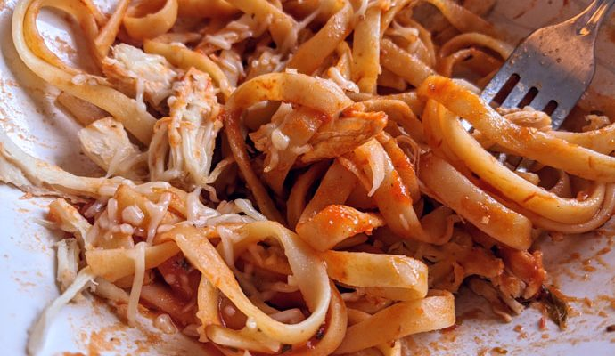 Fettuccine Noodles in Sauce with Shredded Chicken Breast and Parmesan Cheese