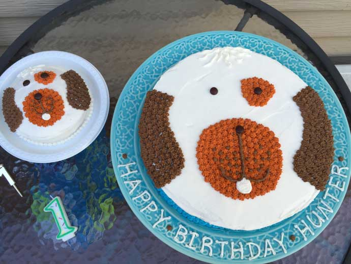 Homemade Dog Cake Easy! and Puppy Dog Mini Cake on plates